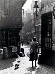 Das Gängeviertel in der ersten Hälfte des 20. Jahrhunderts ...